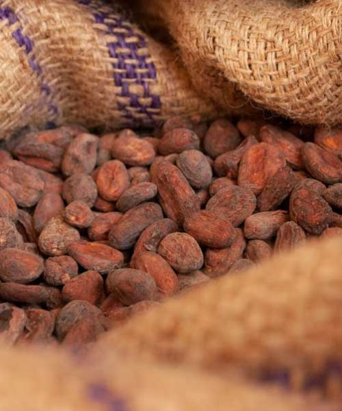 Какао бобы мешок
