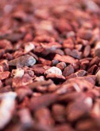 Какао крупка жареная сорт Trinitario