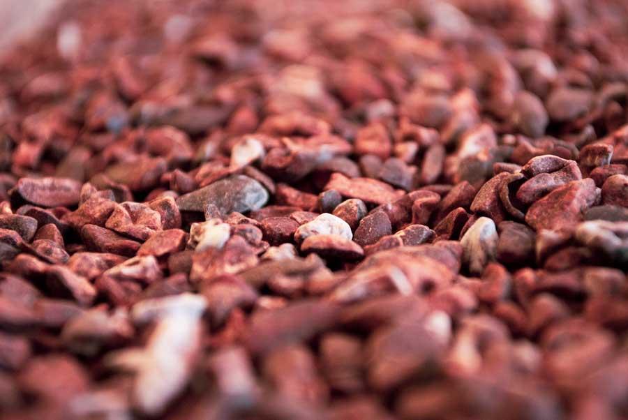 Как жарить какао бобы